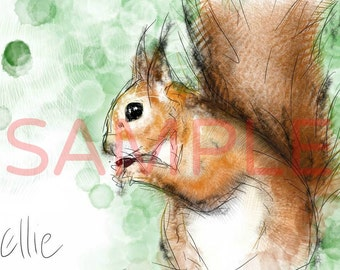 Squirrel - A3 print