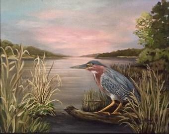 Green Heron Sunset