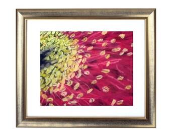 Australian Wattle, Wattle Pastel Print, Wattle Art Print, Wattle Drawing, Wattle Print, Red Flowers Print, Red Decor, Wattle Wall Art