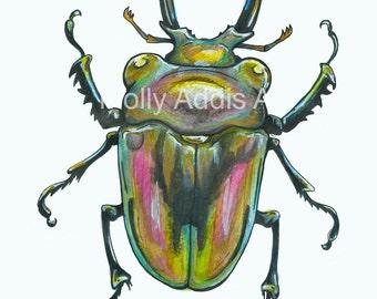 A4 Beetle Print
