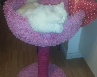 pink champagne  glass cat tree