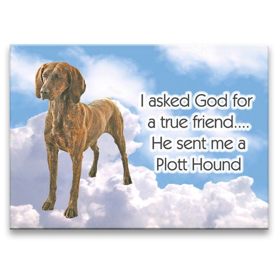Plott Hound True Friend Fridge Magnet