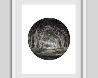 Nature Print, Trees Print, Tree Path, Wooded Pathway, Nature Art, Nature Decor, Trees Artwork, Trees Decor, Tree Pathway, Forest Path