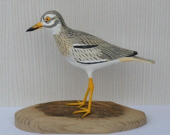 Senegal thick-knee / Burhinus senegalensis - wooden sculpture