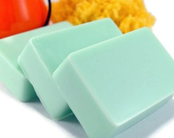 Clearance Sale, Sage and Citrus Soap, Handmade Glycerin Soap Bar