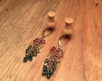 Pale Rainbow Beaded Cluster Earrings