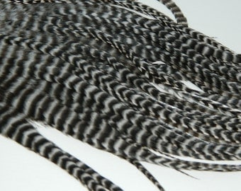 4 NATURAL Black & White GRIZZLY PREMIUM Thick Tapered Hair Feather Extensions, 11 to 13 Inches Long