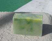 Eucalyptus  Soap Large Vegan  5 oz    buy any 3-6 bars 5.50 Shipping