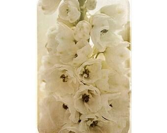 Wedding Art, Sepia Photography, White Delphinium, French Country Cottage Decor, Neutral Art