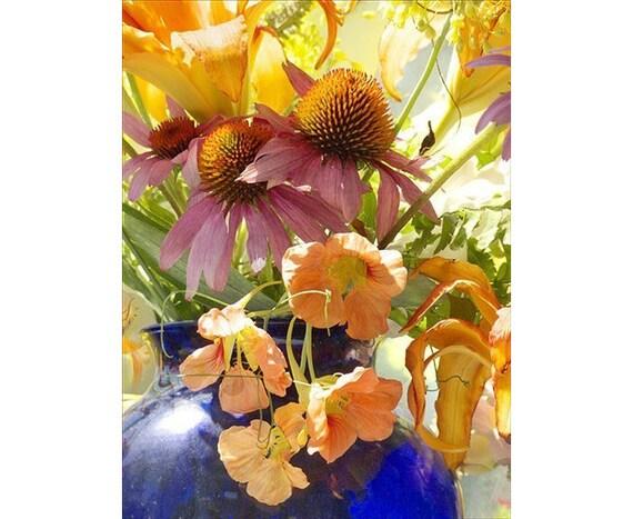 Flower Still Life Photography, Orange Blue Wall Art, Nasturtium Flower Photography, Floral Art Print, Flower Wall Decor