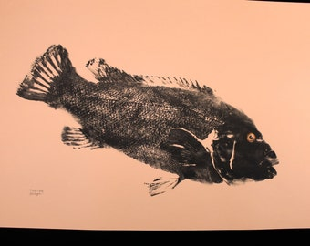 Original Salt Water Black Fish or Tautog Fish Rubbing (GYOTAKU) on tan cover stock 23 X 35