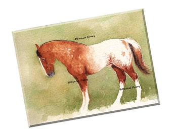 Appaloosa Horse Art Print Sorrel Chestnut Snowflake Appaloosa Colt Horse ACEO Horse Print Horse Gift Horse Lover Equine Art Denise Every