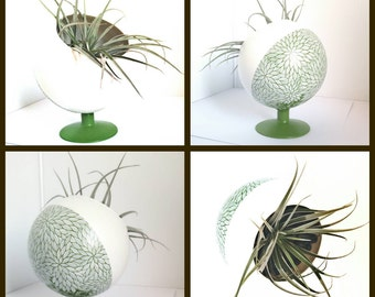 Glass plant holder: hand painted glass planter With air plant and stones