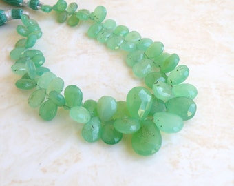 Outstanding Chrysoprase Gemstone Faceted Briolette 8 to 10mm 25 beads 1/2 strand