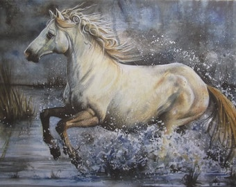 Print of Wild Water Horse