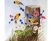 American Golden Finch Yellow Bird Watercolor Print Daisies Pink Flowers Blue Flowers by Arie Reinhardt Taylor