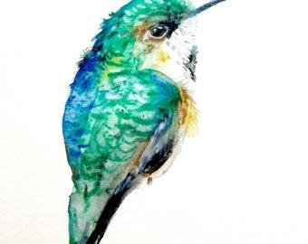 "Hummingbird Watercolor Painting, Original Art, Bird Painting 9""x12"""