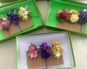 Gift set of 3 colorful bobby pins adorned with dried flowers, on pastel color bobby pins. To wear in your hair.