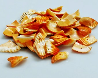 Shell Chip Beads - Orange Dyed - GM392