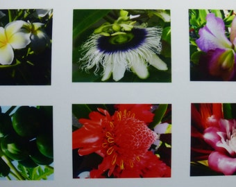 Hawaii photo cards, box of 6 (5 x 7 cards).
