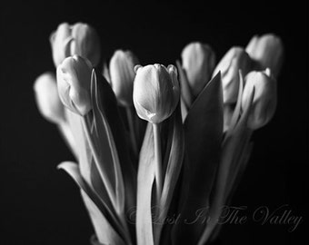 Tulip Photograph, Still Life Print, Farmhouse Decor, Fine Art Photography, Photo of Tulips, Floral Print, Spring Flowers, Blooms, Bouquet