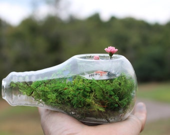 Light bulb terrarium-Koi & water lily pond-Preserved moss NO water needed-Pink water lily