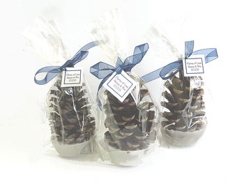 50 Pine Cone Fire Starters - Individual Clear Gift Bags  - Personalized Gift Tags - Royal Blue Winter Wedding Favors or Bridal Shower Favors