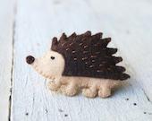hedgehog in a box