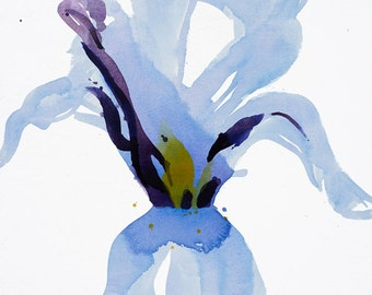 "Large Watercolor Floral Canvas Art, Botanical Iris Painting,  blue purple, yellow, orange 48 x 48"" ""Soft Iris"" watercolor canvas, original"