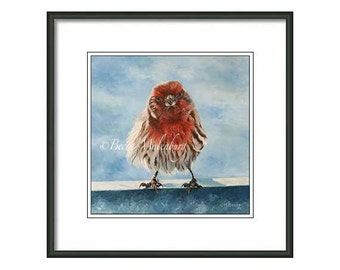 bird art S/N LE PRINT house finch wildlife nature