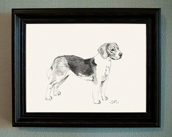 Original Beagle Drawing in Simple Black Frame