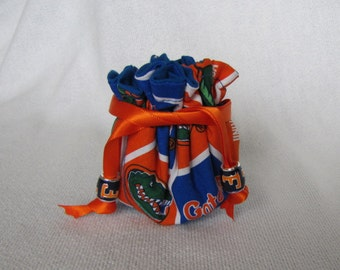 College Team Jewelry Bag - Mini Size - Traveling Jewelry Pouch - Tote - FLORIDA GATORS
