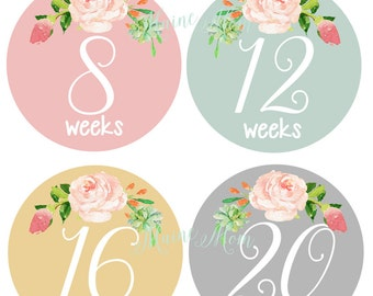 GIFT, Pregnancy Belly Stickers, Watercolor Roses, Weekly Pregnancy Stickers, Monthly Pregnancy Stickers, Belly Bump Stickers, Photo Prop