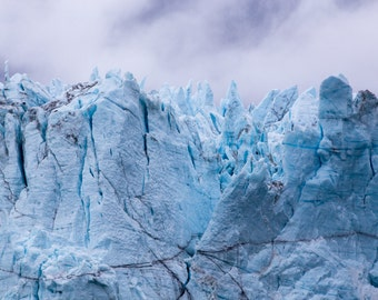 Grand Pacific Glacier,  Glacier Bay National Park - Fine Art Print