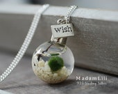 925 Silver Alive Marimo Moss ball Necklace