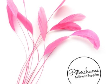 Extra Long Stripped Coque Millinery Feathers - Bright Pink