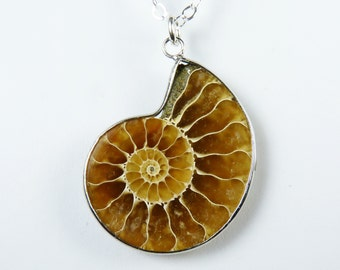Genuine Fossil Necklace, Caramel and Honey Brown Ammonite Fossil Pendant with Unusual Wavy Design on a Sterling Silver Chain