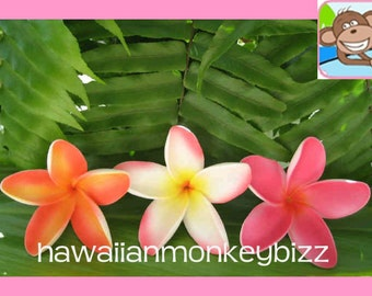 STARFISH PLUMERIA (SMALL) - Foam Hair Pick or Clip - Your Choice of 1 . . .