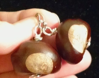 Real Buckeyes Earrings, Sterling Silver Earwires,  #57712, FREE SHIPPING