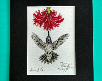 BLACK CHINNED HUMMINGBIRD, Original Watercolor Painting on Paper by Susana Caban