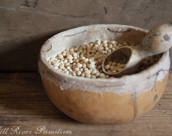 Early Look Primitive Make-Do Gourd Bowl with Gourd Spoon