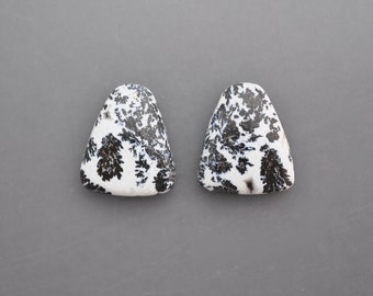 Dendritic Feather Agate Pair