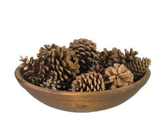 """Natural Pine Cones 40 Assorted Sizes 1-3"""" Fall Autumn Craft Decor Woodland Rustic Wedding Candle Tray Filler Bowl Filler Rustic Decor"""
