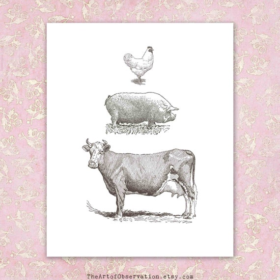 Zebra Print Kitchen Decor: Kitchen Decor Print Cow Pig Chicken Print Farm Animals
