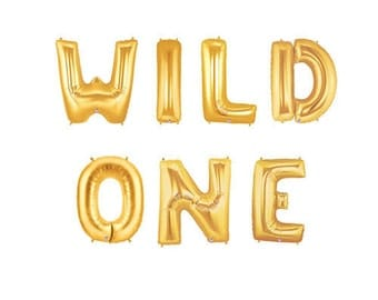 "Sale 14""  WILD ONE Balloons Balloon Kit Where the Wild Things Are Birthday Kids Nursery Baby Shower Letter Balloons Gold Balloon Silver Pink"