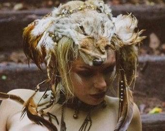 Fox Feather Headdress