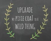 Upgrade to WILD THINGS Coat pattern