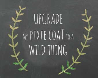 Upgrade to WILD THINGS Coat pattern