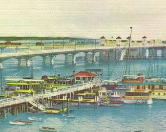 St Augustine Florida Municipal Dock Bride of Lions and the Atlantic Ocean Unused Vintage Linen Postcard