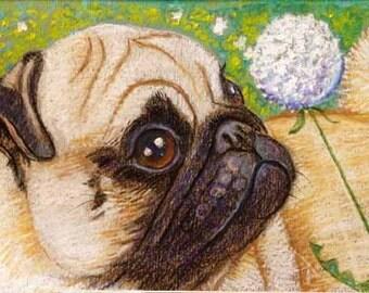 Pug painting art dog pug ORIGINAL Oil Pastel Painting Dog dandelion